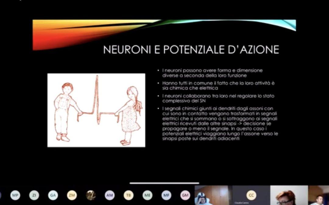 Sistema nervoso, sesso e identità: formazione scientifica in Frassati
